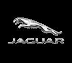 jaguar-180-130px1-30z5c7kqiuq0tzdzxsfd3e